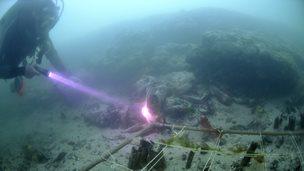 Diving Bouldner Cliff