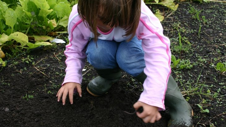 A young girl plays in the soil on an allotment in