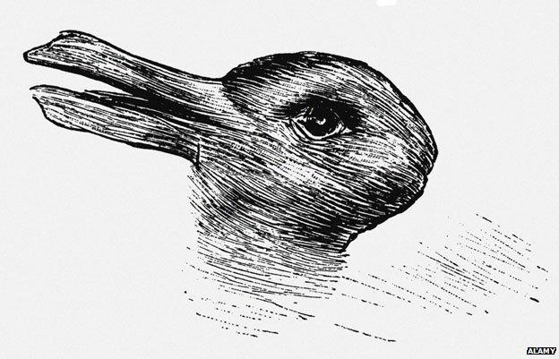 Jastrow's duck rabbit
