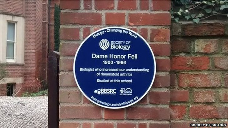 Dame Honor Fell plaque