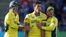 Australia's Glenn Maxwell, Mitchell Starc and Aaron Finch celebrate a wicket against New Zealand