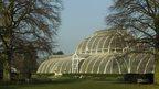 Kew cuts 'a recipe for failure'