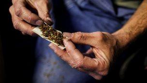 Cannabis and tobacco cigarette
