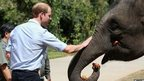 Prince William and elephant