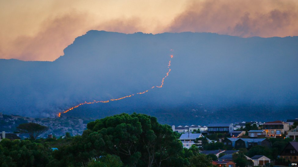 A fire burns through indigenous Fynbos vegetation on the World Heritage site Table Mountain National Park.