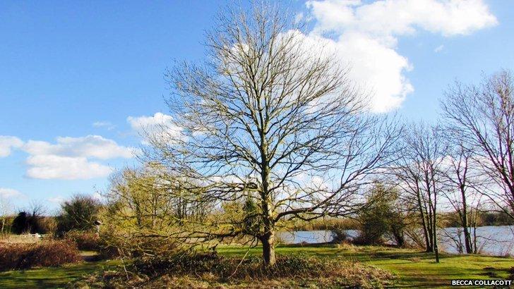 Radley Lake