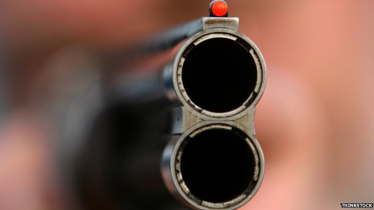 Shotgun. Pic: Thinkstock