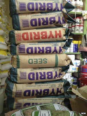Bags of hybrid maize seeds (Image: Markets Matter)
