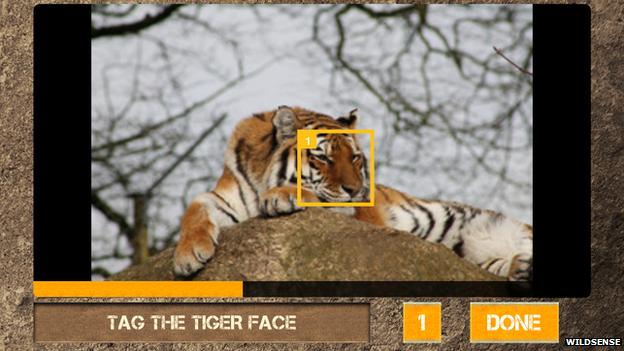 screenshot from the Wildsense app