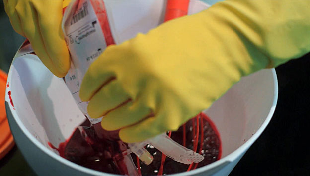 Michael Mosley's blood being put into mixing bowl