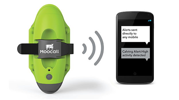 Moocall - finalist in Designs of the Year 2015