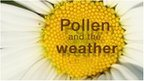 Pollen and the weather