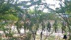 Kenyan troops in Garissa, 2 April