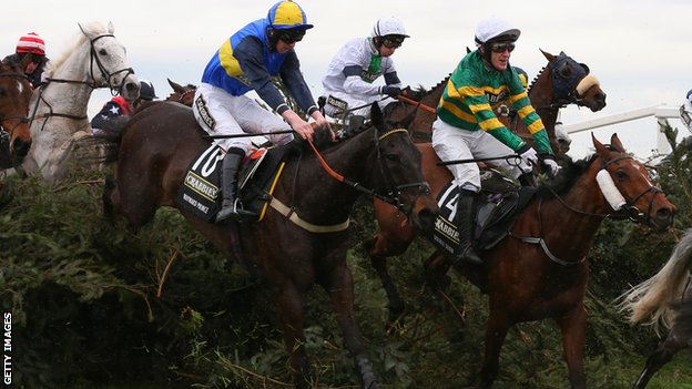 grand national aintree runners