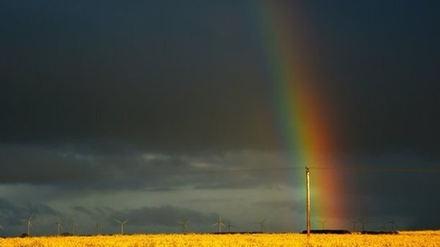 A vibrant rainbow fills a grey, cloudy sky. A wind farm and a yellow field of flowers can be seen