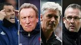 Gus Poyet, Neil Warnock, Alan Irvine, Paul Lambert