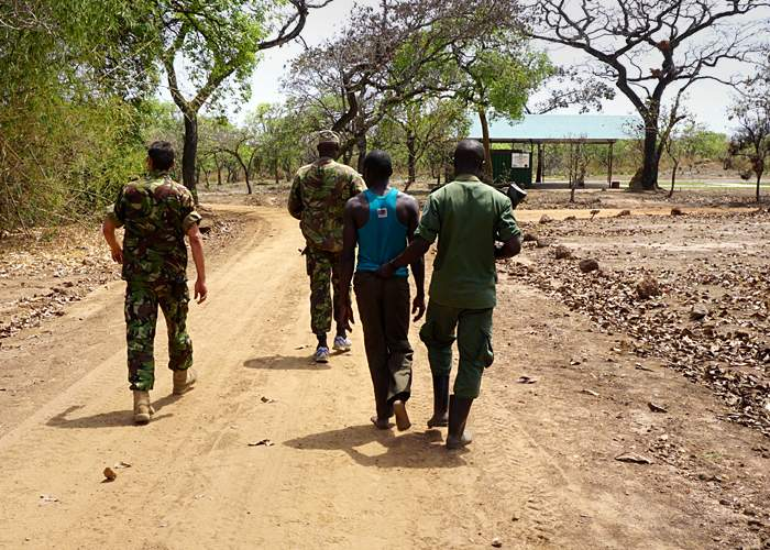 Alleged poacher caught in Garamba