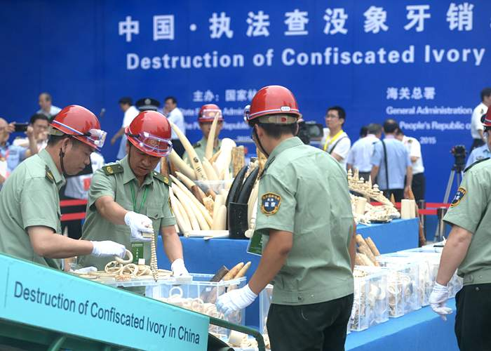 Destruction of ivory products, China, 2015(Getty Images)