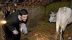 David Miliband enters a cowshed in Semra