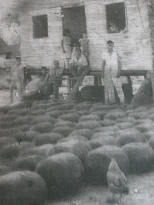 Grainy archive photo shows rubbertappers outside a hut