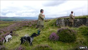 Grouse hunting. Pic copyright GWCT