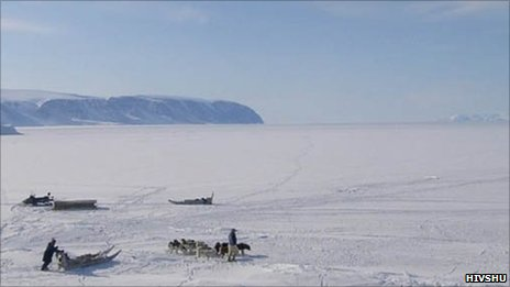 Dog sleds in northern Greenland (Image: Hivshu)
