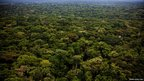 Aerial shot of the jungle in south-eastern Central African Republic © MARKO KOKIC/ICRC