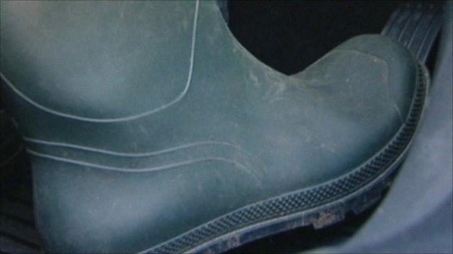 A Wellington boot