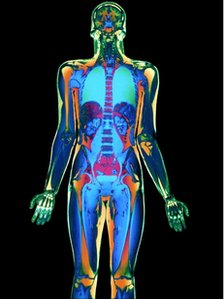 Coloured MRI scan of a man's body