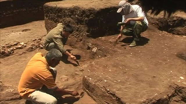 Digging in Africa