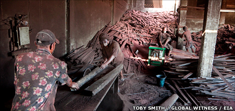 Madagascan loggers (T Smith/Global Witness/EIA)