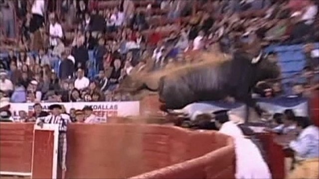 Bull leaps into crowd at Mexican bullring