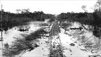 Tracks submerged by water. Photograph by Dana B Merrill from the archive of the Museu Paulista, Sao Paulo University
