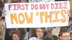 Banner reading First Dobby Dies, now this? Photo: Fred Saugman
