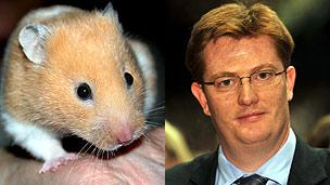 Hamster, Danny Alexander MP