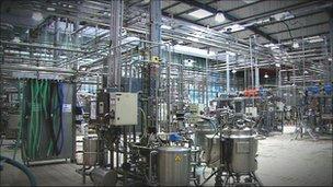 Yoghurt factory