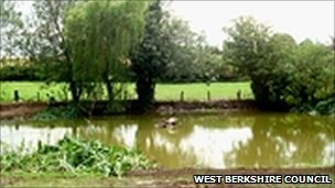 The pond in West Isley