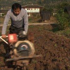 Qing ploughing