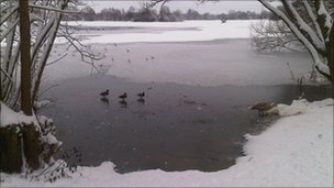 Helen Niebuhr's picture of Witney Lakes on Sunday
