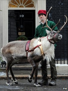A reindeer in Downing Street on Monday