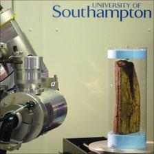 Pliosaur fossil in CT scanner