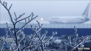 Branches of a tree are covered with ice, as a plane is seen in the background at Moscow's Domodedovo airport