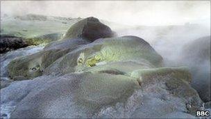 Sulphur pools at Te Puia, Rotorua, New Zealand Sept 2010