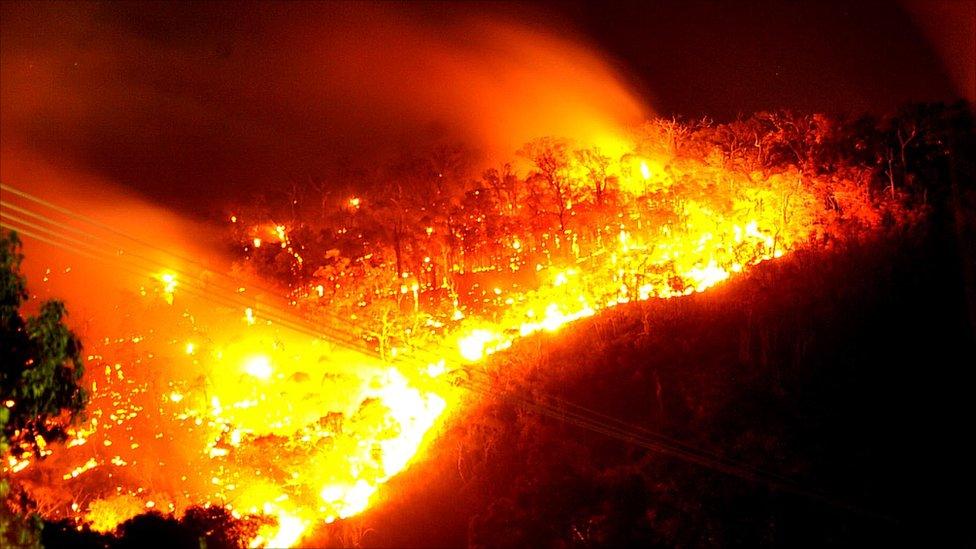 Kết quả hình ảnh cho fire in australia
