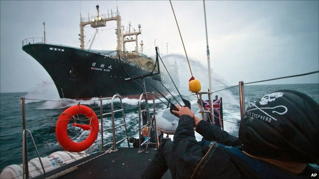 Sea Shepherd activist readies a slingshot to unleash red paint towards Japanese whaling ship Nisshin Maru, 9 February 2011