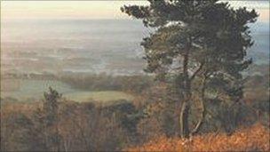 Leith Hill (Picture John Miller/Surrey Hills)