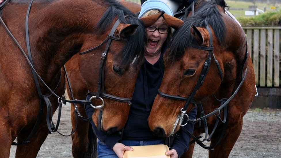 Horses smelling woman's chips