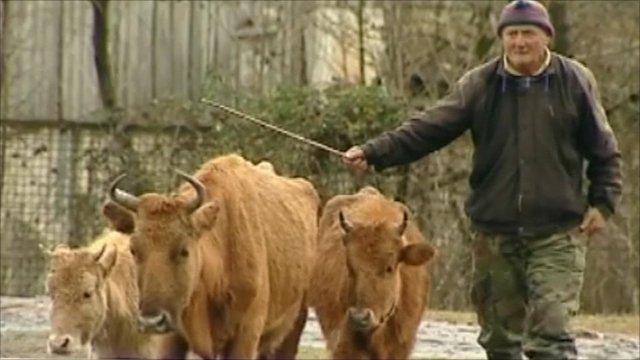Farmer in Georgia