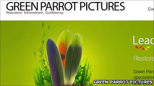 Green Parrot website