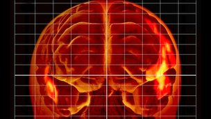 Language brain centres during MRI
